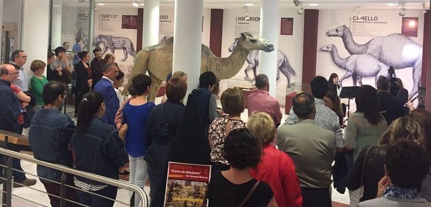 La Noche de los Museos supera las cifras de la primera edición