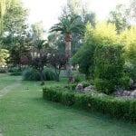 El Boletín Oficial de la Región publica hoy la convocatoria de proyectos para el Jardín Botánico