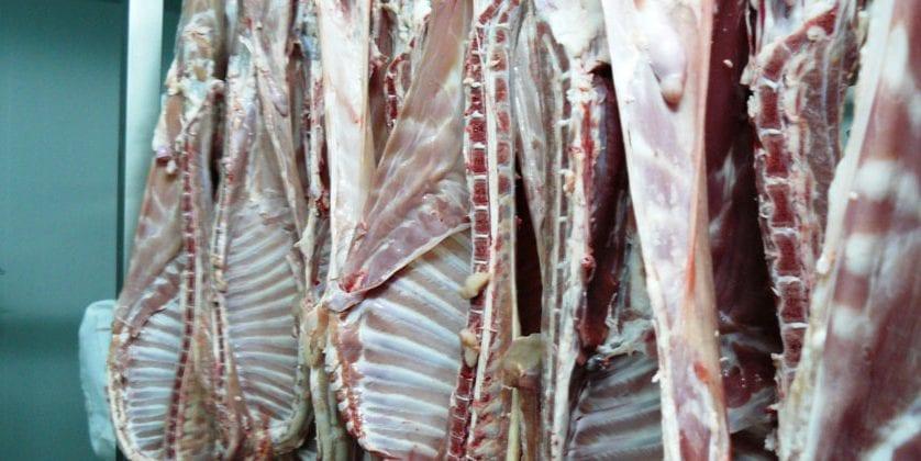 Roban cabritos por valor de mil euros del matadero municipal de Jumilla