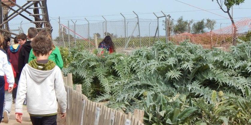 Veinte niños de ADIX Jumilla disfrutan de un campamento en la Granja Escuela La Loma