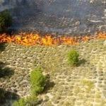 Controlado un incendio forestal en la Sierra El Molar