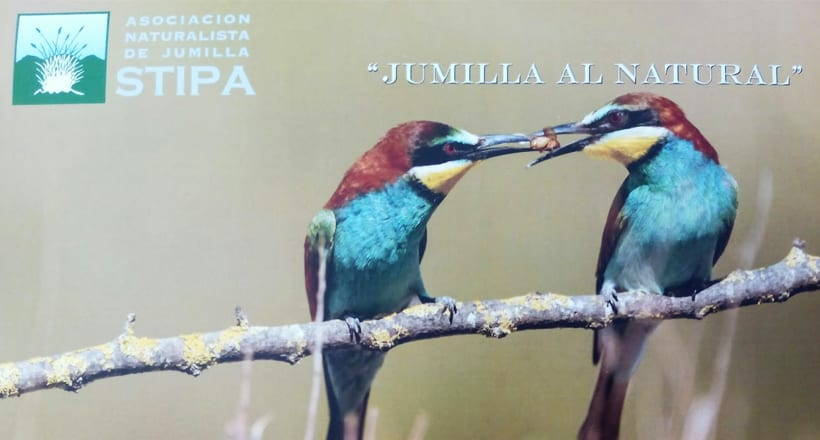 STIPA invita a los fotográfos a participar en la confección del calendario 2018