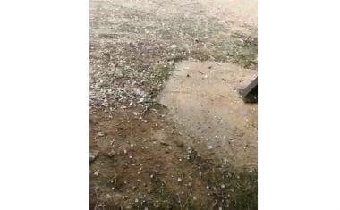 Lluvia y granizo en Jumilla en la antesala del fin de semana