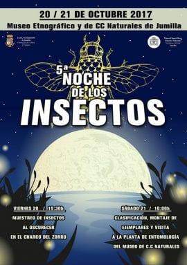 noche-insectos