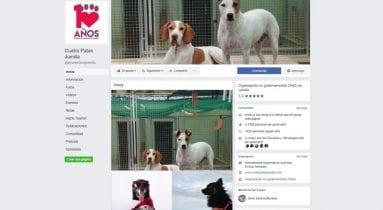 facebook-cuatro-patas