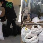 Desarticulan en Jumilla un grupo de delincuentes que se dedicaban a sustraer productos del campo