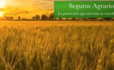 El Gobierno Regional autoriza Convenio con la Entidad Nacional de Seguros Agrarios para agilizar el control de subvenciones