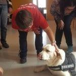 La Concejalía de Salubridad ofrece terapia con animales para personas con discapacidad