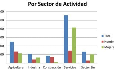 El paro en Jumilla desciende en Agricultura, Industria y Construcción, pero aumenta en Servicios