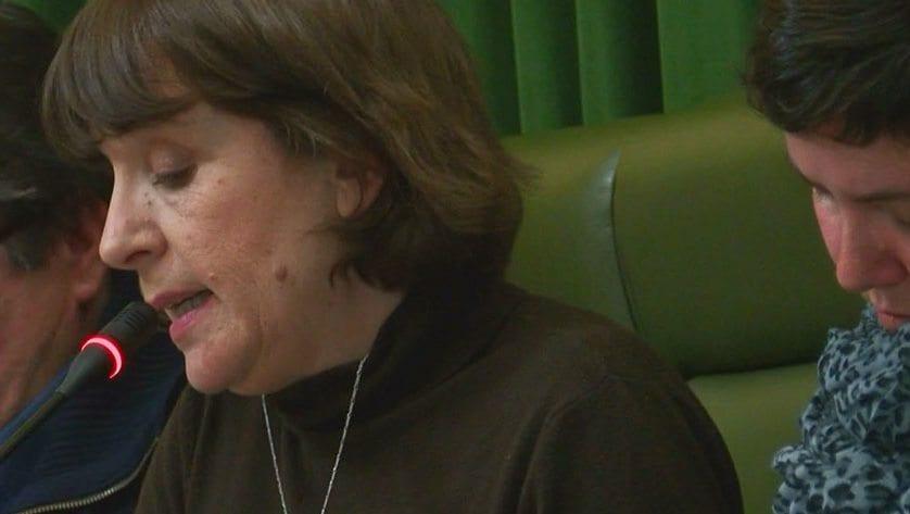 IU-Verdes considera que el proyecto de Presupuestos Municipales es continuista, electoralista y apuesta por las privatizaciones