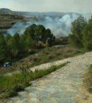 Incendio en las proximidades del Humedal del Charco del Zorro en Jumilla