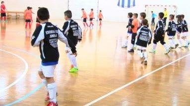 Equipo Benjamín Escuela FS Carchelo