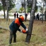El CIFEA de Jumilla imparte un curso para profesionales del sector agrario, forestal y de jardinería