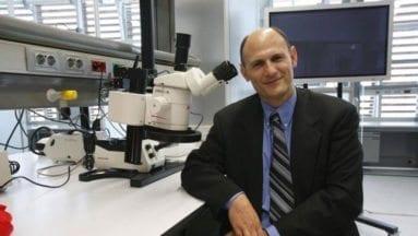 Juan Carlos Izpisúa, Bioquímico