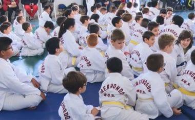 Taekwondistas jumillanos competirán en una nueva fase del  regional escolar de Castilla-La  Mancha