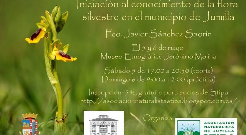 Este fin de semana STIPA realiza un curso de iniciación al conocimiento de la flora de Jumilla