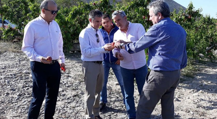 El granizo afectó a unas 2.800 hectáreas de la Región