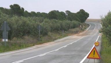 Carretera Carche Jumilla