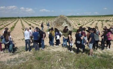 Alumnos de la Universidad de Murcia se interesan por los 'Cucos' de Jumilla