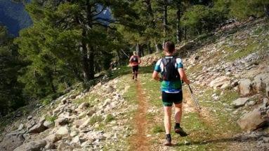Maratón de Los Bosques del Sur