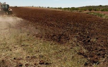 La utilización de lodos como abono agrícola está prohibida en Jumilla durante el verano