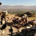 Jornadas de puertas abiertas en las excavaciones de Coimbra