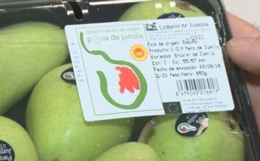 Jumilla es la mayor productora de pera 'Ercolini' en España y Europa