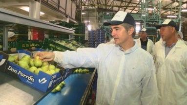 Visita del Consejero de Agricultura a la Cooperativa Campos de Jumilla