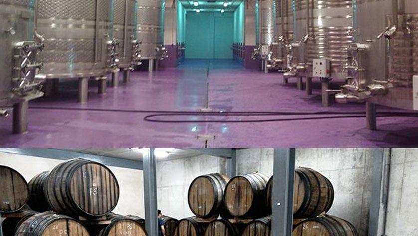 El sector vitivinícola regional recibirá 4,7 millones para mejorar instalaciones de transformación e infraestructuras del vino