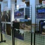 En marcha las actividades por el 45 Aniversario del Grupo Hinneni