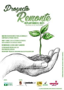 reforestacion-buey-jumilla