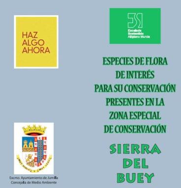 triptico-conservacion-sierra-buey-jumilla