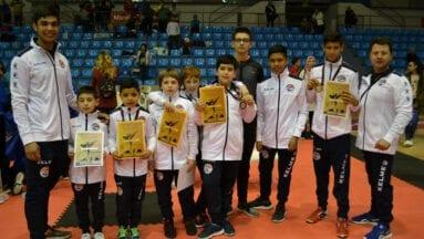 Cinco medallas para el Club de Taekwondo Jumilla