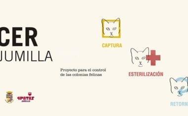Se pone en marcha CER Jumilla para el control de colonias felinas
