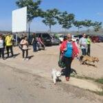"""Todo listo para la IX Marcha Solidaria """"Ladra, Camina y Aprende"""" de 4Patas Jumilla"""
