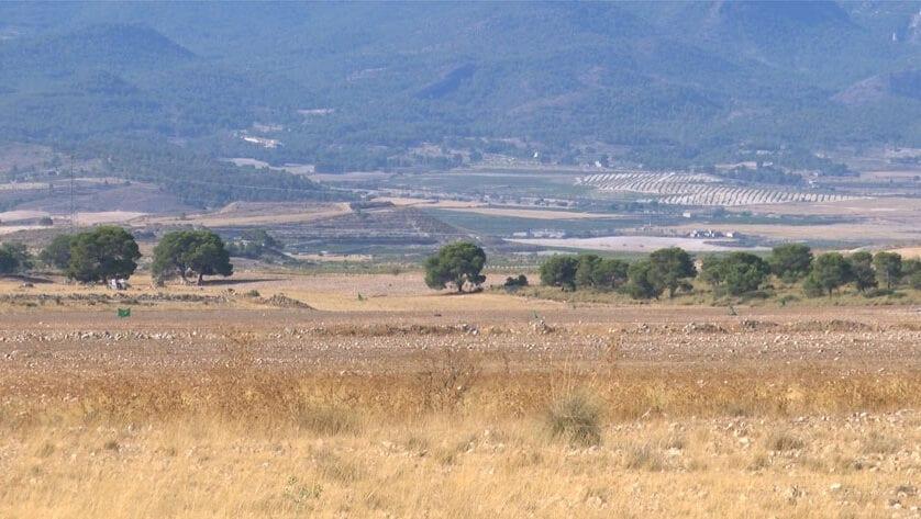 Finaliza el estudio de afecciones al dominio público de los montes de Jumilla