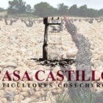 Casa Castillo Pie Franco 2017 consigue 99 puntos Parker