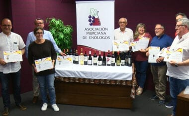 Ya se han entregado las Medallas del II Concurso de Vinos Vinespaña 2019