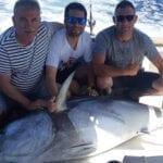 Tres jumillanos pescan un atún rojo de 190 kg