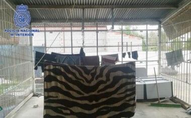 Treinta detenidos por la explotación de inmigrantes en naves y fincas agrícolas