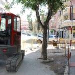 El arbolado de la acera sur de la avenida de Levante será sustituido por moreras