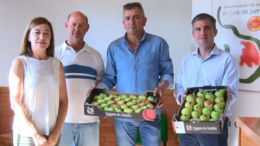 Jumilla es la mayor productora de pera Ercolini de Europa
