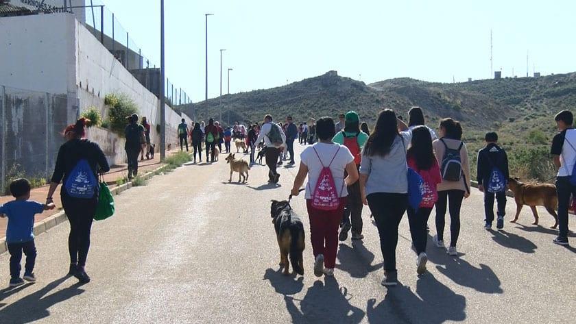 VIII Marcha Solidaria, una de las actividades anuales de concienciación