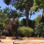 La Junta de Gobierno aprueba la contratación de un proyecto de mejora para la Plaza del Rollo