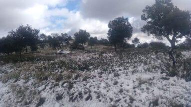 En la cima de El Carche ha cuajado un poco la nieve