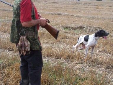 La caza es una actividad con gran importancia socioeconómica para el medio rural