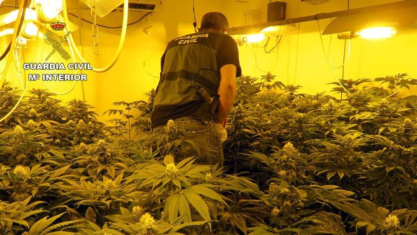 La Guardia Civil desmantela en Jumilla un grupo criminal dedicado al tráfico de drogas