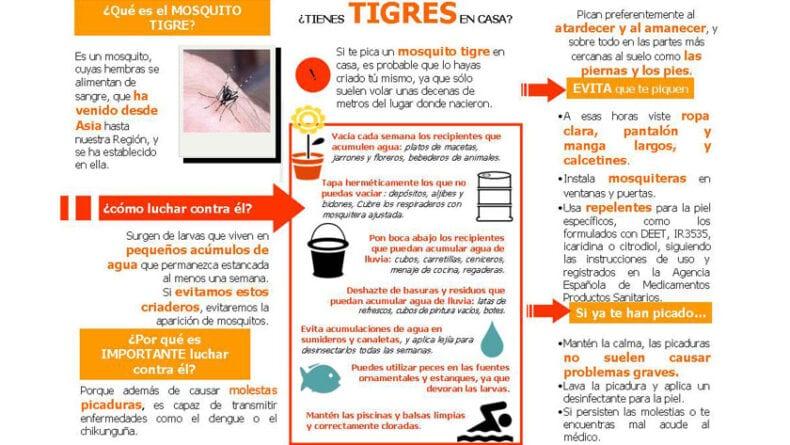 Consejos para evitar la expansión del mosquito tigre