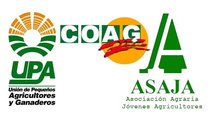 Las organizaciones agrarias ASAJA, COAG y UPA expresan la preocupación e inquietud del sector vitivinícola de la Región