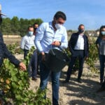 El consejero de Agricultura visita las labores de la vendimia en Jumilla